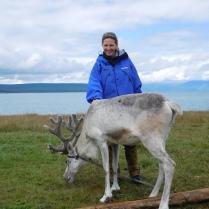 Cha avec un renne