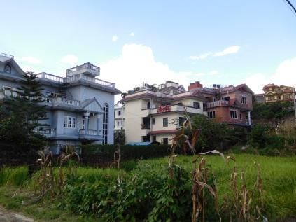 Vue sur la maison de nos hôtes (à l'arrière plan au milieu)