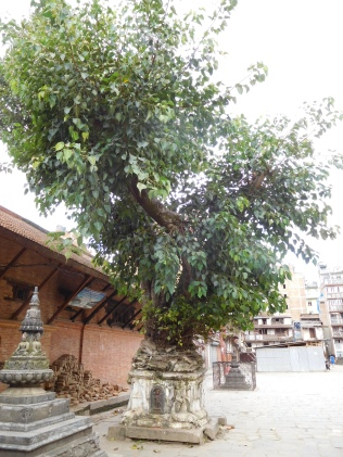 Bibal sortant d'un stupa