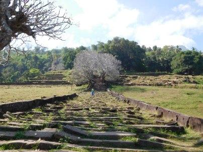 Site du Vat Phou
