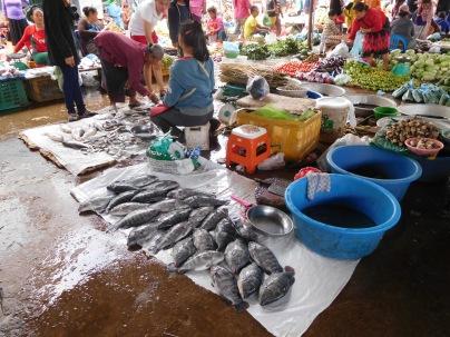 Etal de poissons au marché de Paksé