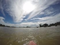 Sortie kayak à la recherche des dauphins d'eau douce