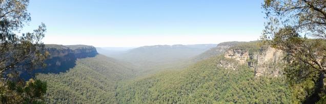 Vue panoramique sur le bush à perte de vue