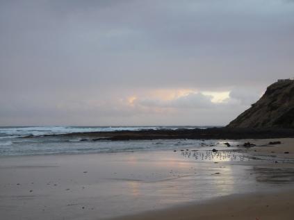 L'attente des pingouins au coucher du soleil