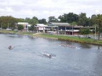 Aviron sur la Yarra River