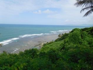 La côte Est, sauvage et junglisante