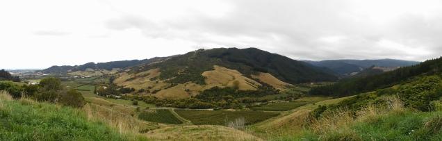 Les vergers au sud du parc Abel Tasman