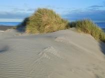 Les dunes improbables du Farewell Spit