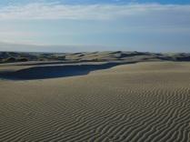 Dunes à perte de vue
