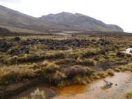 Le champs de lave que nous n'avions pas vu à l'aller