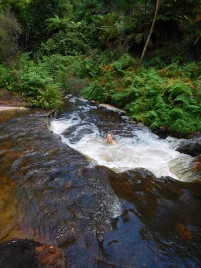 Bain sauvage et chaud à Kerosene Creek