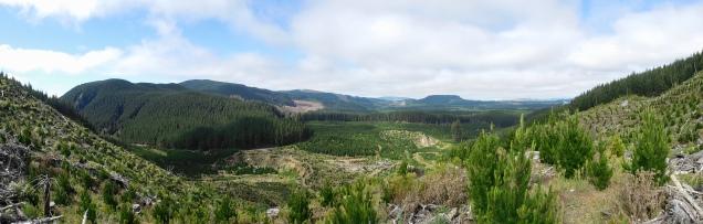 Vue sur Rotorua
