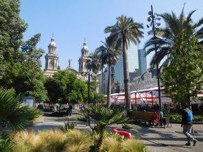 Plaza de Armas et ses palmiers chiliens