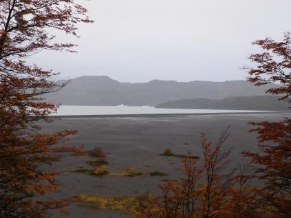 Marche au lago Grey dans le Parc