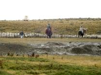 Gauchos dans la plaine patagonne