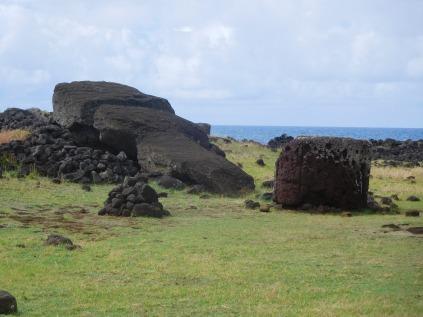 Plus grand Moai jamais déplacé