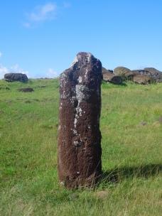 Unique Moai représentant une femme (la double tête se trouve au British muséum...)