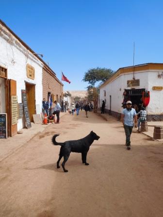 Rue principale de San Pedro
