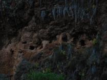 Les tombeaux pillés